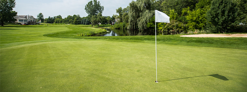 Grand Rapids Golf Leagues